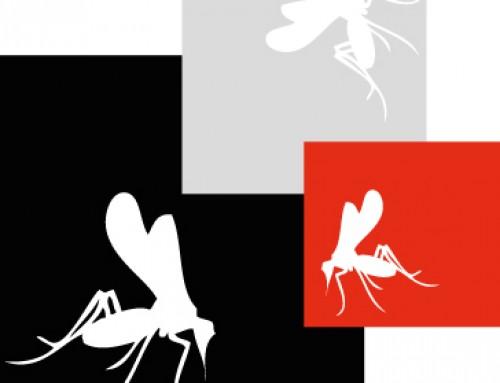 Mücken für die Wissenschaft